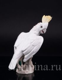 Попугай какаду, Augarten Wien, Австрия, сер. 20 в., артикул 02358